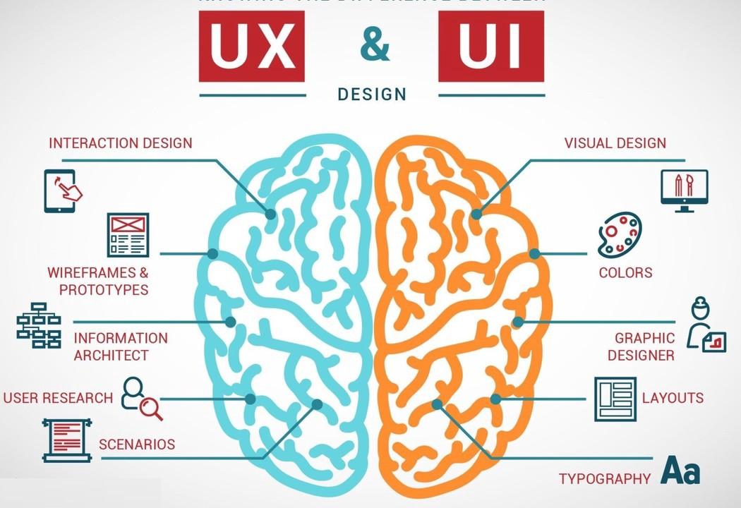 Xin việc UI Designer cần gì? Mức thu nhập ra sao?